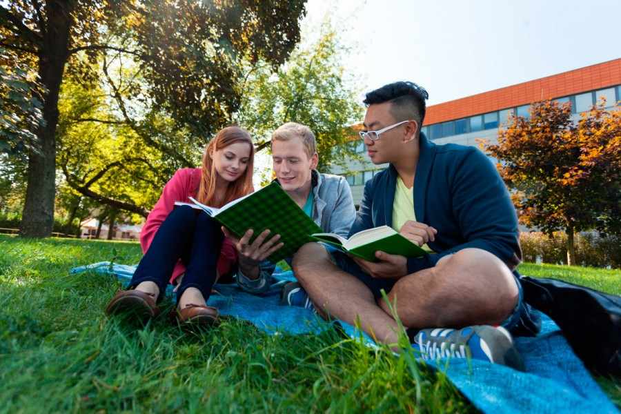 Three students study outside on a blanket